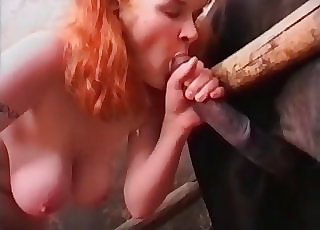 Huge-titted red-haired loves a horse