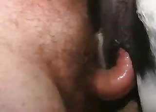 Real intense fucking for a horse pussy